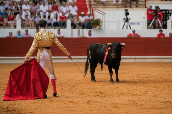 Man inside the ring participating in bullfighting in Spain with a red cape and audience.