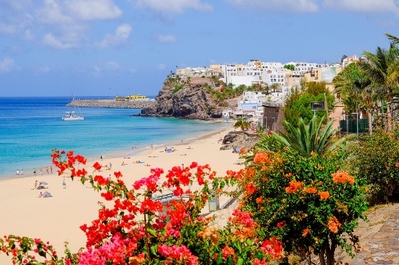 View of a beach in Fuerteventura with flowers backing the sand