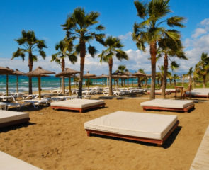 Beautiful beach in Marbella with luxury sunloungers and scattered palm trees