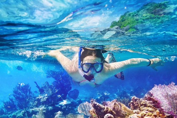 A girl snorkelling in the coral reefs among fishes and shells.