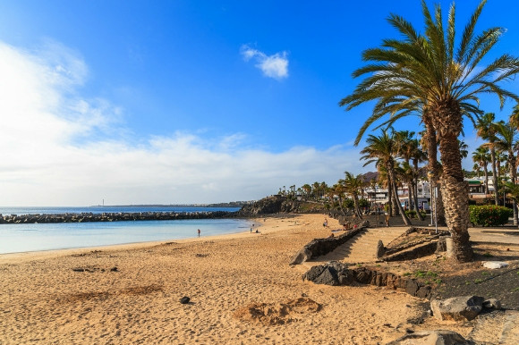 Palm trees towering the golden grains of sand on Playa Flamingo beach in Lanzarote