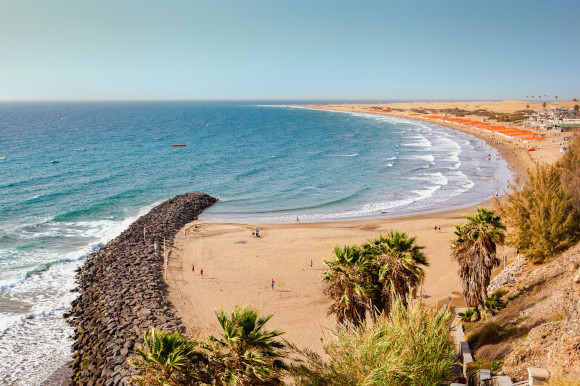 A view of the curved sand at Playa del Ingles Beach in Gran Canaria with golden sand and a backing of palm trees