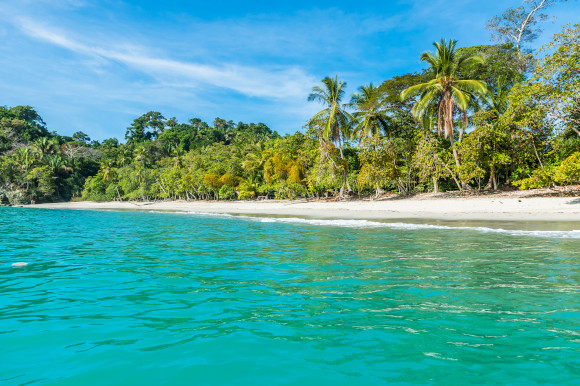 Manuel Antonio in Costa Rica filled with tropical palm trees and fronted by white, soft sand