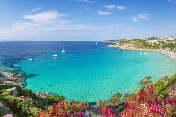 Rena Bianca Beach in the north of Sardinia in Italy surrounded by pink flowers and cliffs