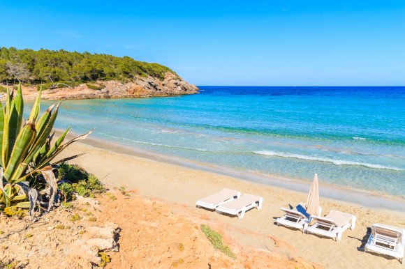 The popular Cala Nova Beach in Es cana with sunloungers sitting on the sand and glittering blue waters surrounded by green cliffs