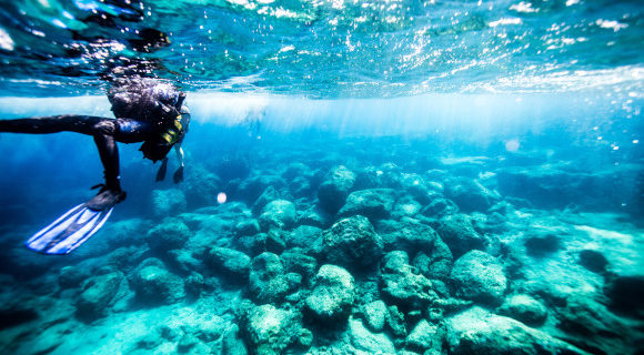 The shallow coral reefs of Turkey being explored by a scuba diver