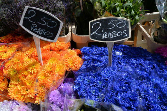 Orange and blue flowers at Amsterdam's Albert Market Holland