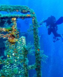 The Zenobia Shipwreck