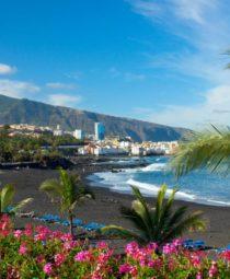 Playa Jardín