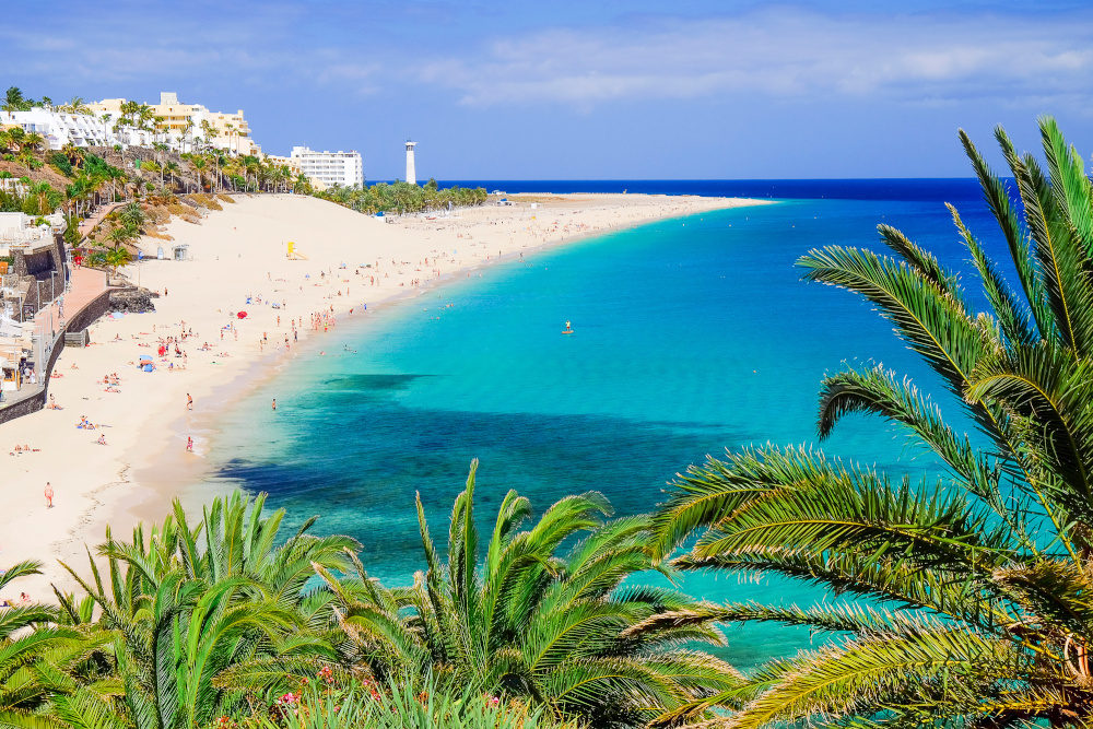 The beach Playa de Morro Jable with green palms, view on the town and the Atlantic coast. Location the Canary island Fuerteventura, Spain.