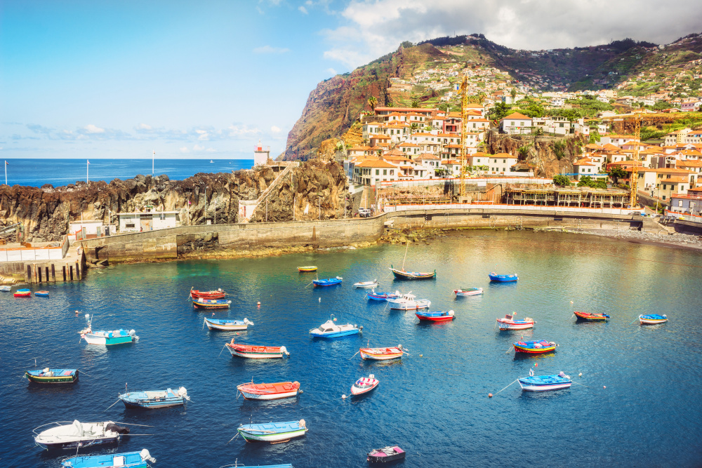 Port of Madeira backed by orange-roofed houses and with fishing boats decorating the water