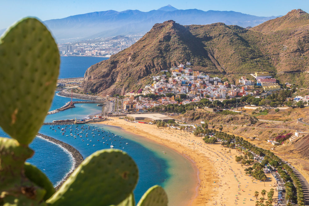 Aerial view of Las Teresitas beach with cactus in the front