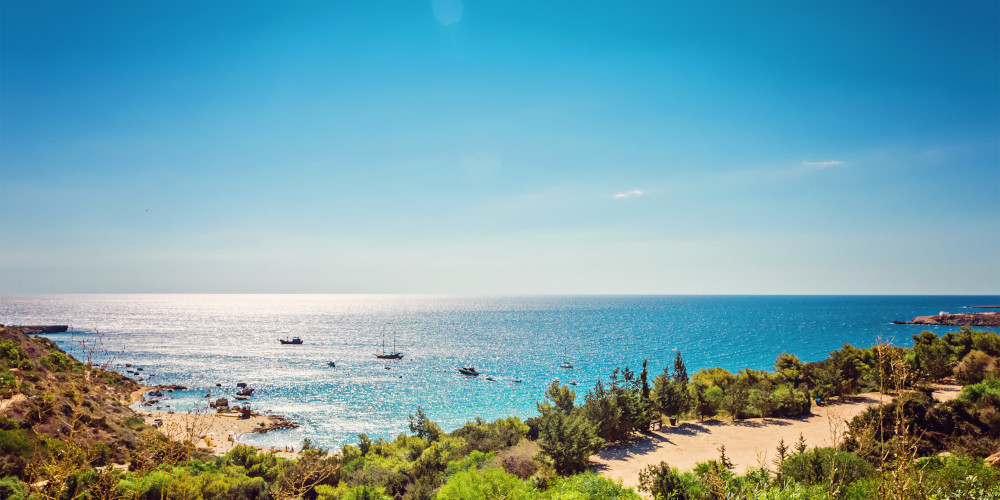 A far-stretching view of Konnos Beach in Protarus dotted with greenery